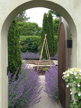 A view through the door of Ina's walled garden where the purple Nepata is blooming!