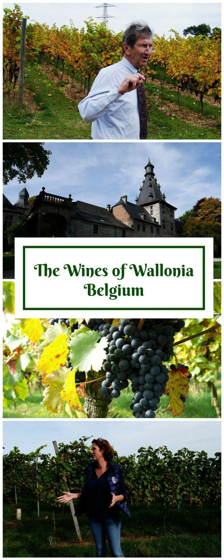 Wines of Wallonia Belgium Gastronomy and Wine in Wallonia | Belgian Wine | Wine Wallonia | Wine Belgium | Gastronomy Wallonia | Food Wallonia | Belgian Gastronomy | Namur Gastronomy