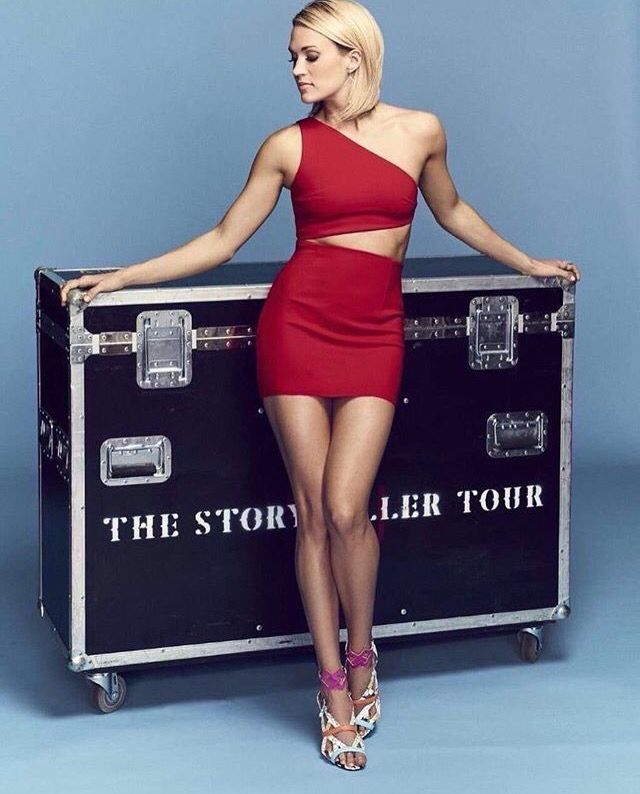 Saw her at Madison Square Garden in NYC during this tour. FANTASTIC! Carrie (and her performance) were stunning.
