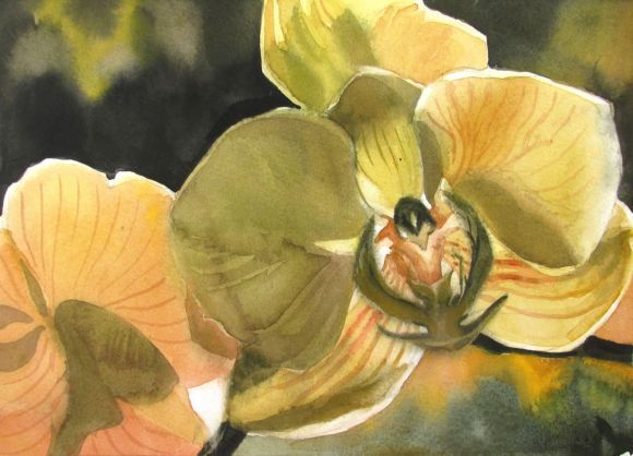 """A painting a day #2 """"Backlit orchid"""""""