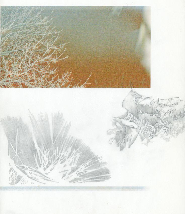 Impression numérique et graphite sur papier calque.   2010