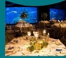 See the full size image at http://partymotif.com #Aquarium #Wedding #Cyan #Blue #Aqua #Tiffany #Coral #Reef #Ocean #Party #Motif #Nautical #Yacht #Boat #Fish #Dolphin #Whale #Centerpiece #Flowers #Sea #Seashells #Beach #Lake #Water #Aquatic #Underwater #Swim #Swimming #Mermaid #Cookies #Cupcakes #Candy #Formal #Fashion #Seaweed #Algae #Sharks #Sealife #Marine #Marina #Docks #Bay #River #Stream