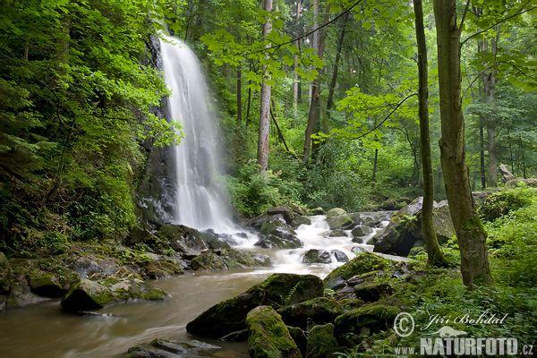 Terčino údolí - vodopád (Nov)