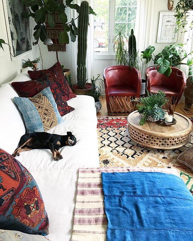 125 Best Bohemian Living Rooms Images On Pinterest
