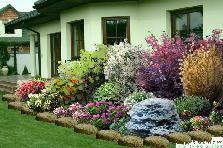 rabatka przed domem - GardenPuzzle - projektowanie ogrodów w przeglądarce