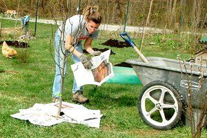 7 Tips for getting rid of stubborn weeds - without using chemicals. You may already have most of these items at home.