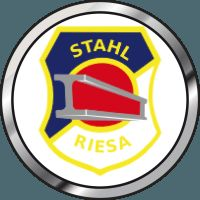 Einen Punkt gewonnen und doch zwei verloren - Fußball, Saison 2015/16, Sachsen, Landesliga, 19. Spieltag, Spielbericht, BSG Stahl Riesa - BSC Rapid Chemnitz