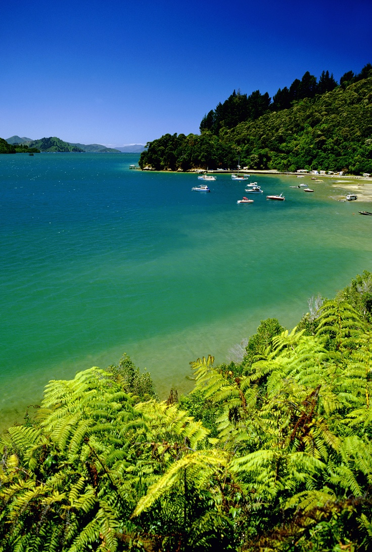 This is home. The beautiful Marlborough Sounds in the South Island of New Zealand.