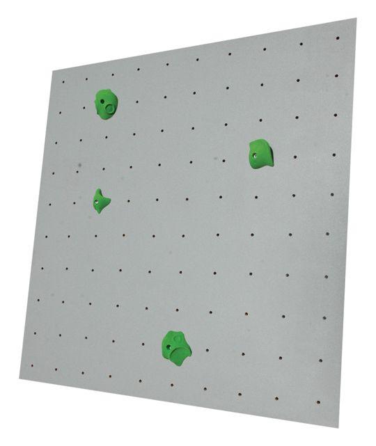 Mur escalade. 150€