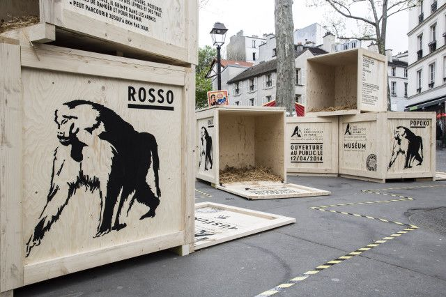 To publicize the reopening of the Paris zoo, ad agency ubi bene deposited open animal crates around Paris.