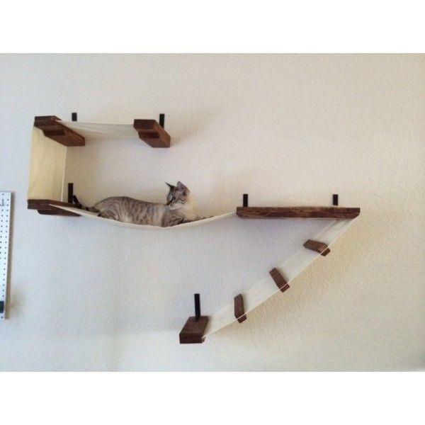 219 Best Images About Cat Climbing Stuff On Pinterest