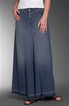 another jean skirt. I found one exactly like this at the thrift store for $5.00.