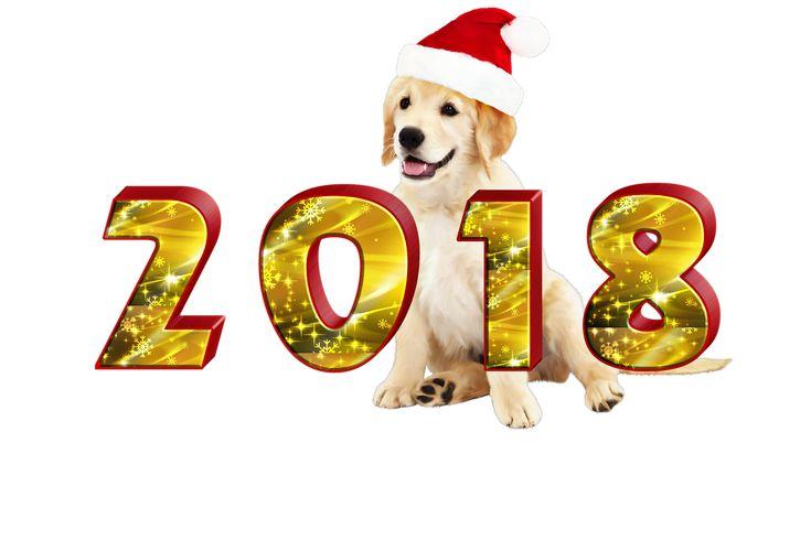 458 besten 2018 Bilder auf Pinterest | Blessed, Büchereien und ...