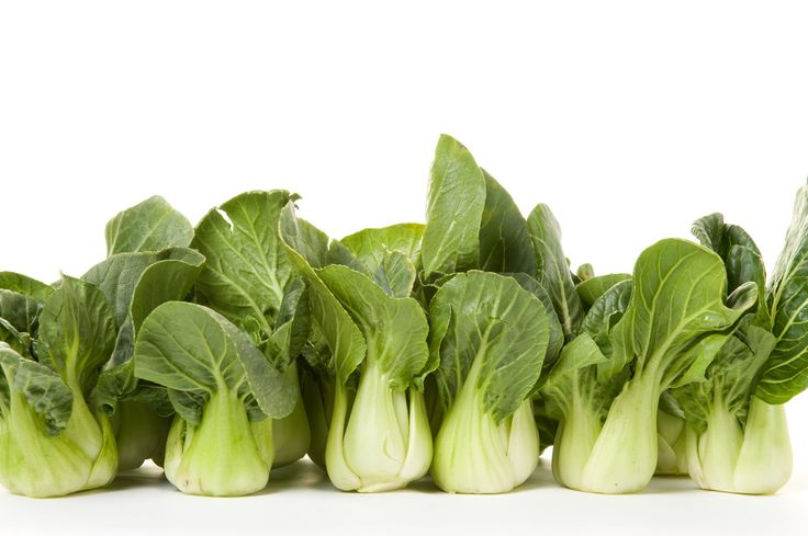 How To Grow And Care For Asian Style Vegetables