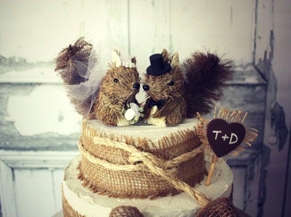 124 best animal squirrel chipmunk images on animal
