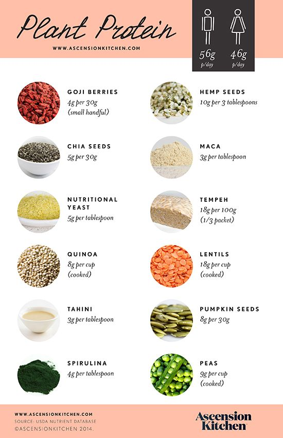 78 Best Plant Protein Images On Pinterest Vegan Recipes Healthy