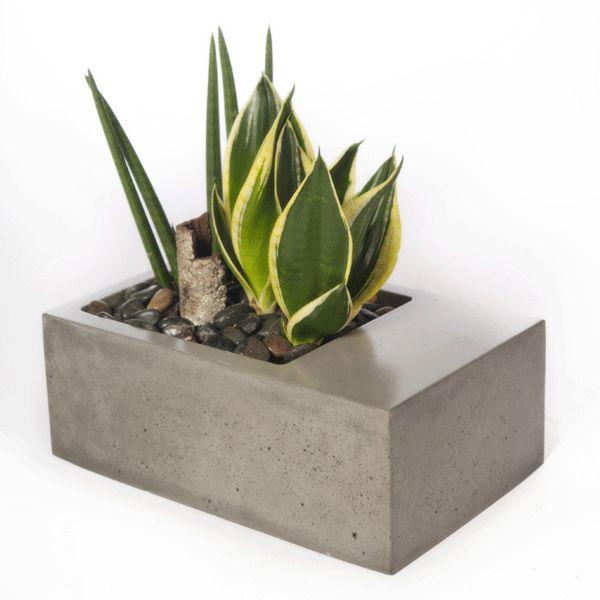 minimalist planter   indoor gardening   Urbilis.com  sc 1 st  Pinterest & 60 best Concrete Planters images on Pinterest Aboutintivar.Com
