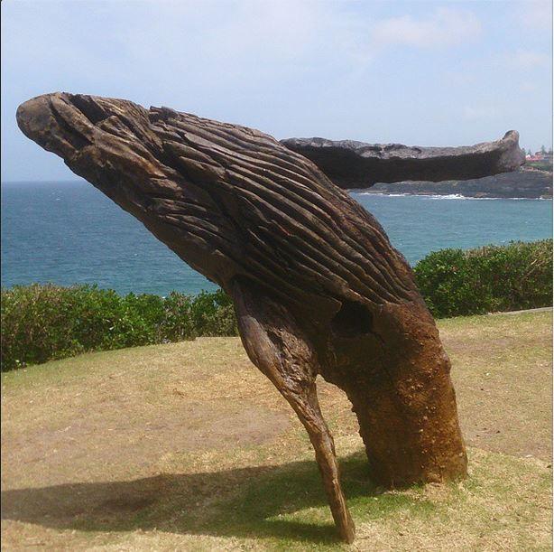 Sculpture by the Sea 2014 Bondi