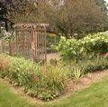 Preparing Your Vegetable Garden for Fall Planting