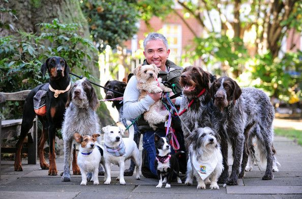Cesar Millan in London