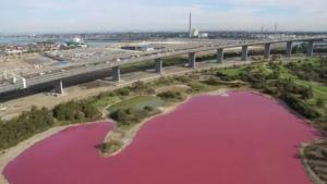 Sebuah Danau di Australia Berubah Menjadi Merah Muda