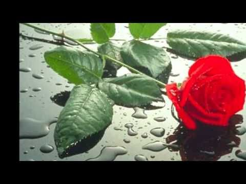 Los Temerarios-Eras todo para mi - YouTube