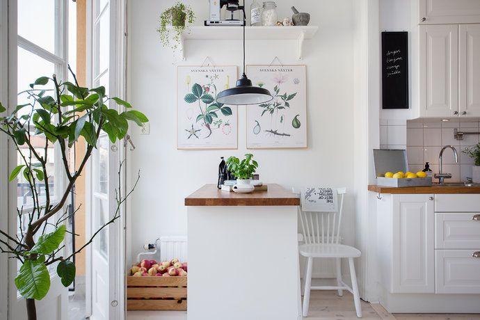 Bilder, Kök/matplats, Lantligt, Växter, Vitt - Hemnet Inspiration