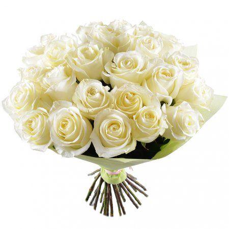 Огромные, королевские белые розы премиум-класса оправдывают название букета «Белый шелк». Многочисленные нежно-молочные лепестки, собранные в продолговатые полураскрывшиеся бутоны, нежны и воздушны, что особенно заметно на фоне плотной блестящей глубокого зеленого цвета листвы, скрывающейся в глубине букета.