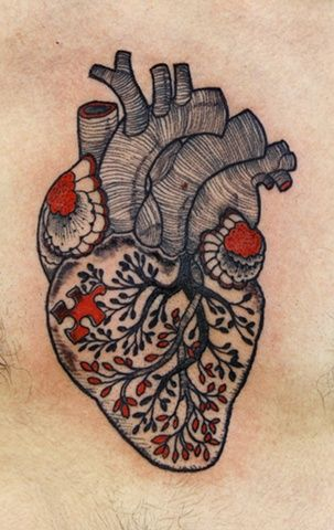 Anatomical puzzle heart
