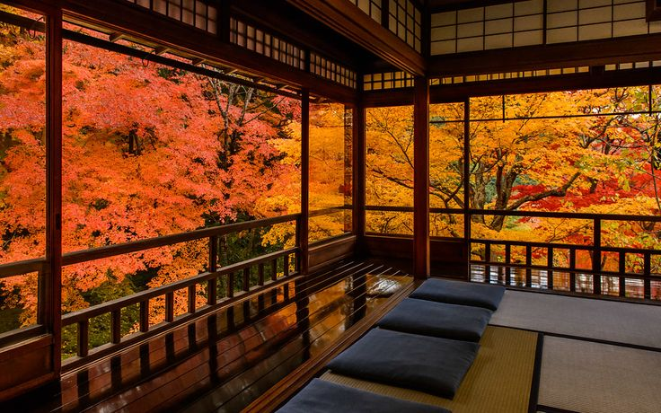 Kyoto Photo: Fall Colors From Inside Ruriko-in Temple
