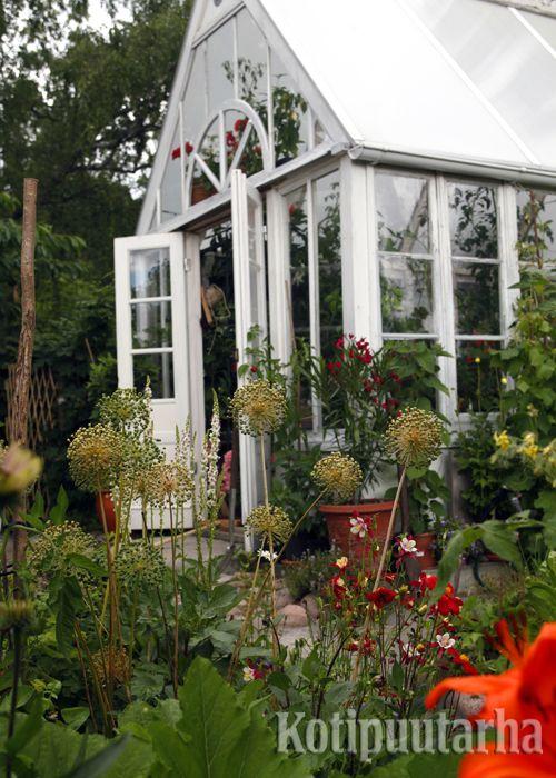 Koristeellisen kasvihuoneen voi rakentaa itse vanhoista ikkunan pokista. www.kotipuutarha.fi