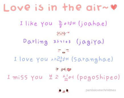 Korean Love Language