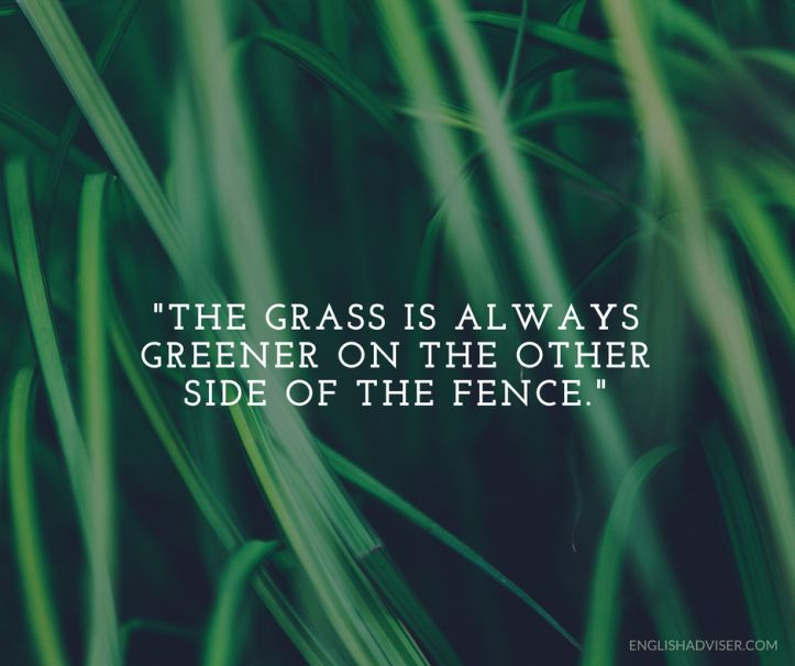 English Language. English Vocabulary. Proverbs. The grass is always greener on the other side of the fence. Satisfaction / dissatisfaction.