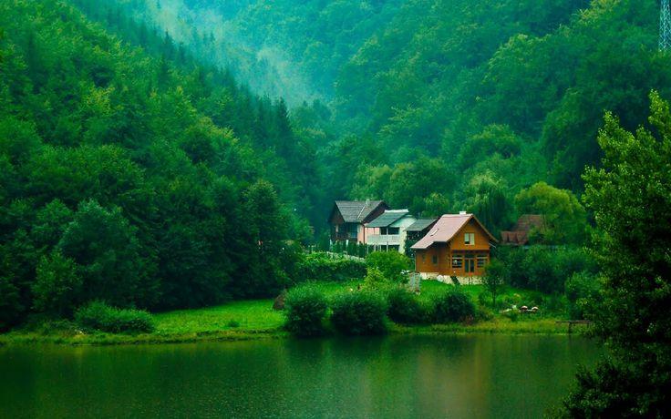 beauty green! <3
