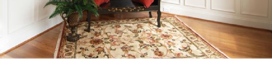 Take a look at these 3 reasons you should let the experts take care of your Oriental Rug Cleaning.