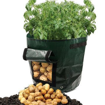 Free Shipping 50L Large Capacity Potato Grow Planter PE Container Bag Pouch Tomato Window Garden - Newchic Mobile