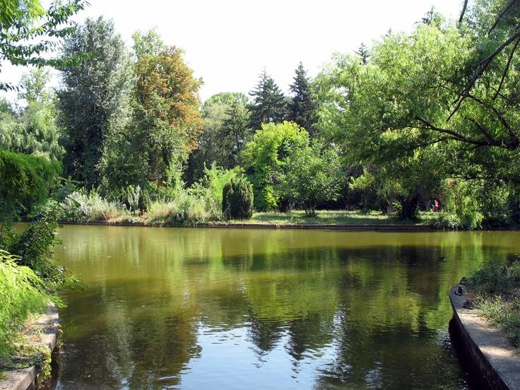 Gradina Botanica Bucuresti-Romania: Un adevarat muzeu al naturii, Gradina Botanica a fost ianugurata in 1885 in zona Palatului Cotroceni. In incinta sa regasesc peste 10 000 de specii de plante de pe toate continentele, multe dintre acestea fiind prtejate de lege deoarece sunt pe cale de disparitie. Plantele sunt aranjate in sectoare, in functie de forma de relief din care provin.