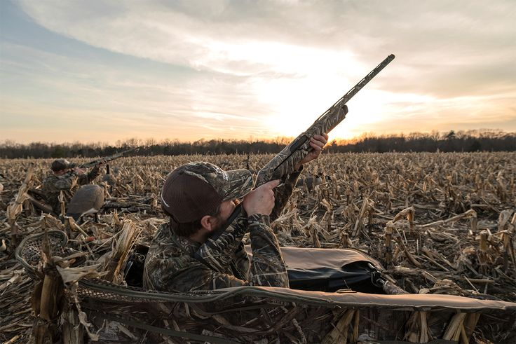 How to Shoot from a Layout Blind or Boat:   I often harp about practicing good wing-shooting form , including proper foot placement, weight distribution and other factors. However, much of that advice is useless in two common waterfowling scenarios : hunting in a layout blind or open-water layout boat. We use those horizontal hides because they're darn effective, almost...