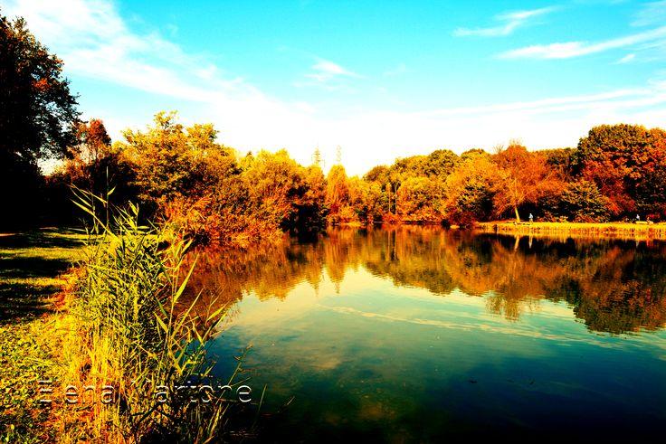 Un piccolo lago in autunno