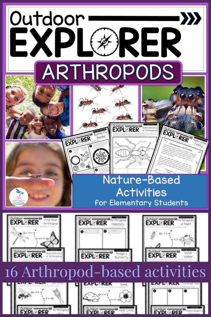 Vertebrates And Invertebrates Istruzione