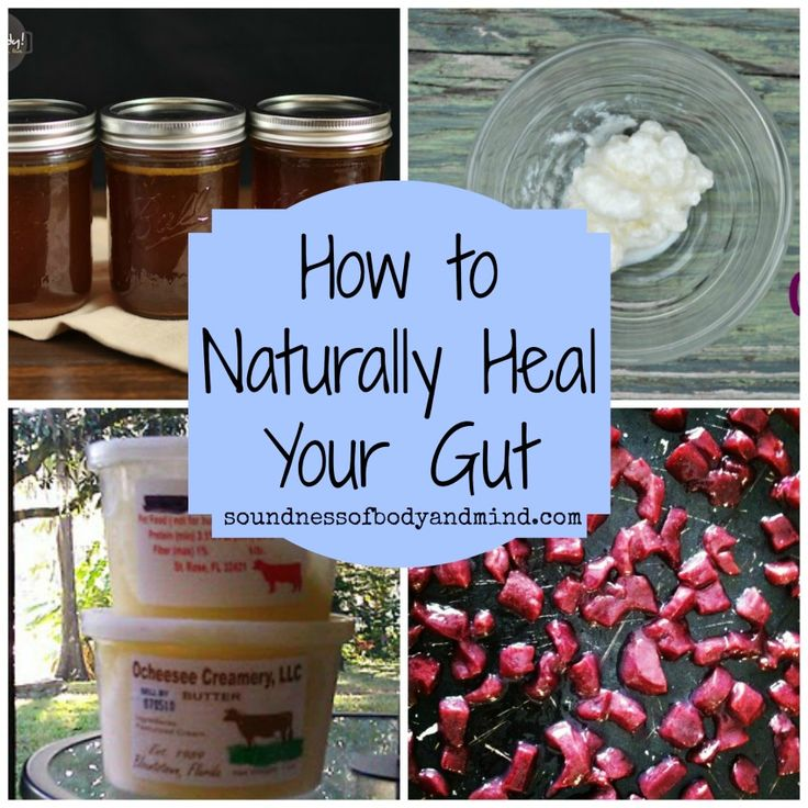 How to Naturally Heal Your Gut | Soundness of Body & Mind