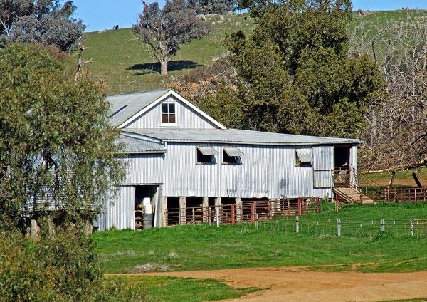 Cootamundra-Shearing-shed
