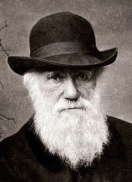 Charles Darwin 1880.jpg