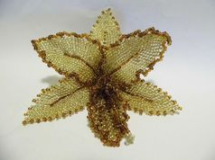 Beaded orchid