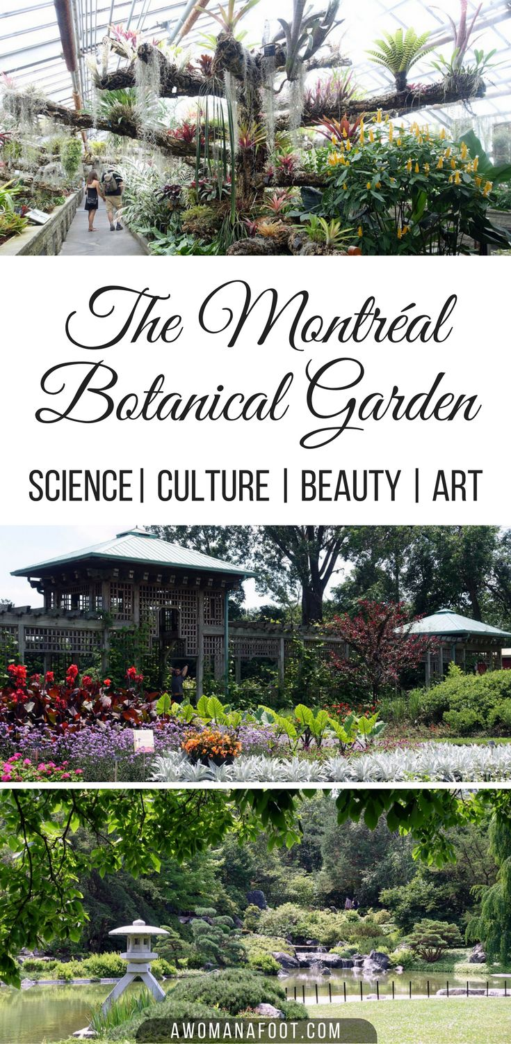 Montreal's Botanical Garden is one of the city's main attractions. Grab comfy shoes, snacks and a camera for a lovely day among stunning flora! Quebec   Canada   Must-see   Canadian travel   Insectarium   Japanese Garden   Unusual attractions   awomanafoot.com