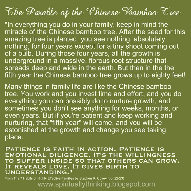 """The Parable of the Chinese Bamboo Tree Patience is faith in action. Patience is emotional diligence. It's the willingness to suffer inside so that others can grow. It reveals love. It gives birth to understanding."""""""