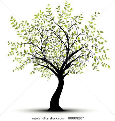 Green tree over white background with lush foliage - stock vector