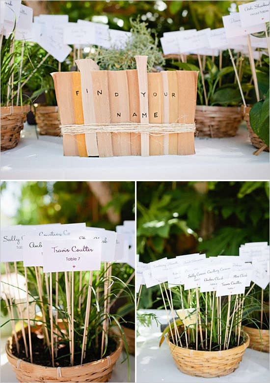 easy seating chart ideas - flower pots! Put an empty pot in the middle of the table for them to make their own garden!