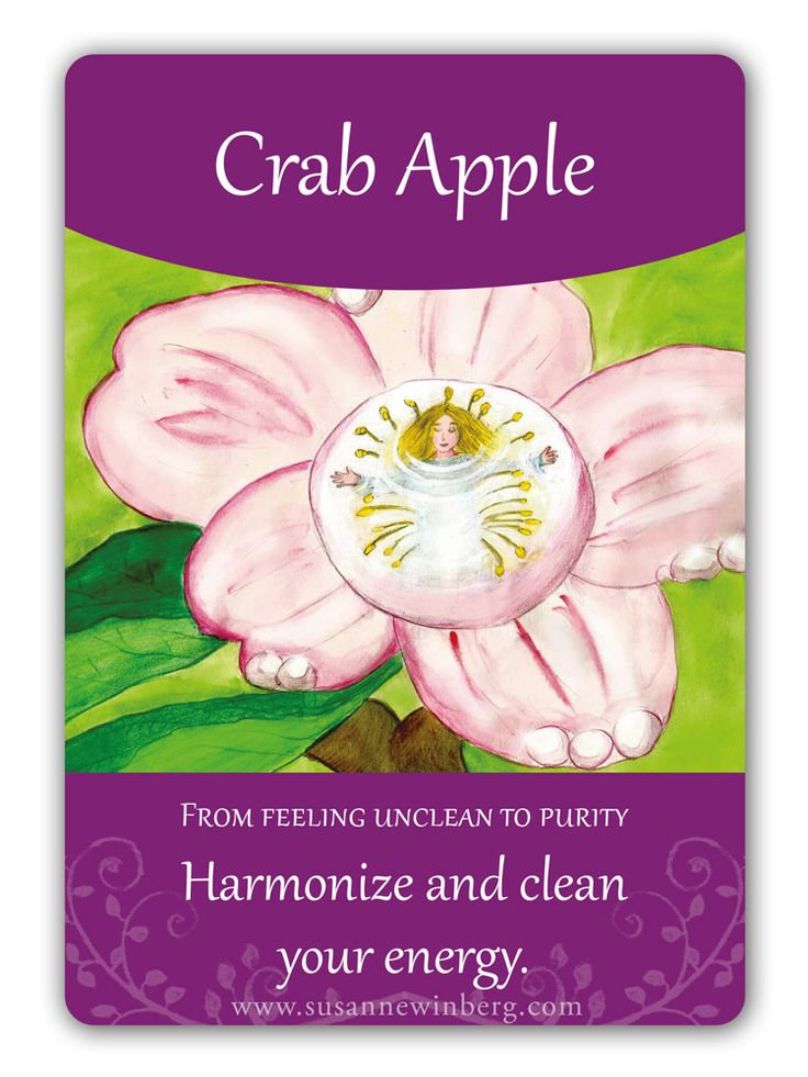 Crab Apple - Bach Flower Oracle Card by Susanne Winberg. Message: Harmonize and clean your energy.