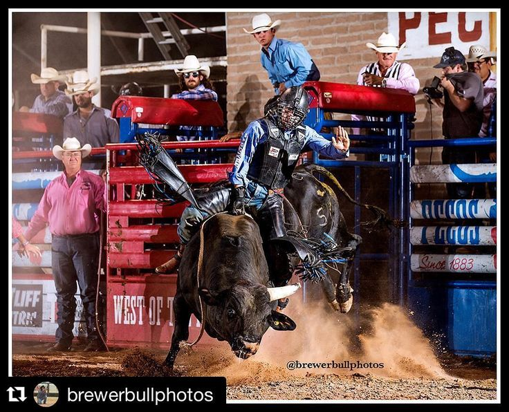 #Repost @brewerbullphotos with @repostapp ・・・ Brody Yeary on Scary Larry from Carr Pro Rodeo on Thursday night at the West of the Pecos rodeo.  #rodeotime #westtexas #prorodeo #bullriding